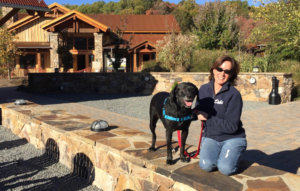 Don't Miss Out On These Dog-Friendly Breweries in Virginia!
