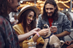 Best Places to Celebrate Barktoberfest with Your Dog