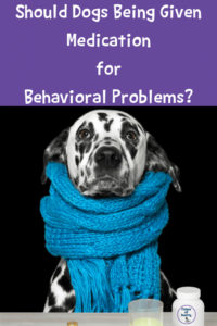 Should Dogs Being Given Medication for Behavioral Problems?