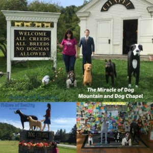 The Miracle of Dog Mountain and Dog Chapel