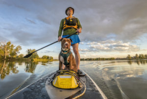 Best Places to Paddleboard With Your Pooch