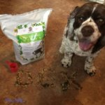 Should Dogs Have Vegetables Added To Their Diet?
