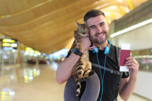 Rover on the Railways:  Train Tours With Your Pet