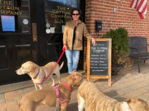 Five Pet-Friendly Historic Small Towns Worth the Road Trip